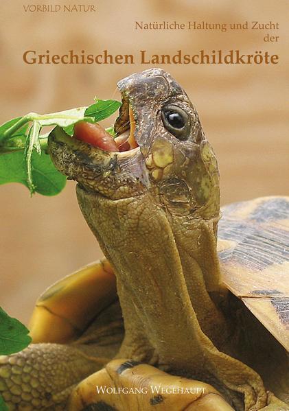 Natürliche Haltung und Zucht der Griechischen Landschildkröte - Coverbild