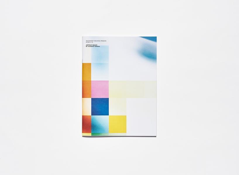 PICNIC # 12: Abstract-Quake - Coverbild