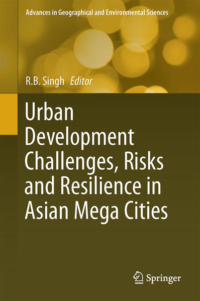 Urban Development Challenges, Risks and Resilience in Asian Mega Cities - Coverbild