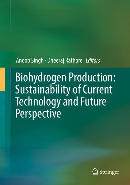 Biohydrogen Production: Sustainability of Current Technology and Future Perspective - Coverbild