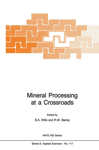 Mineral Processing at a Crossroads - Coverbild