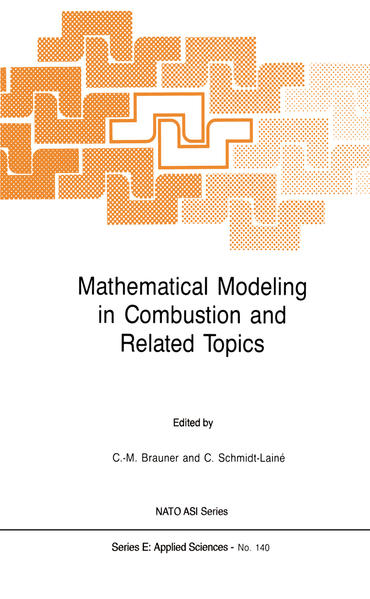 Mathematical Modeling in Combustion and Related Topics - Coverbild