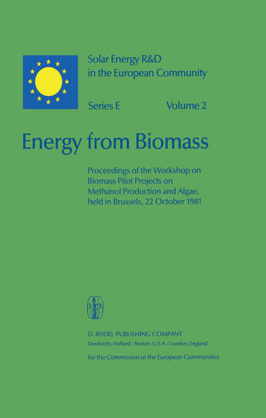 Energy from Biomass - Coverbild