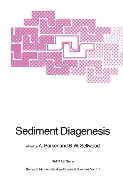 Sediment Diagenesis - Coverbild