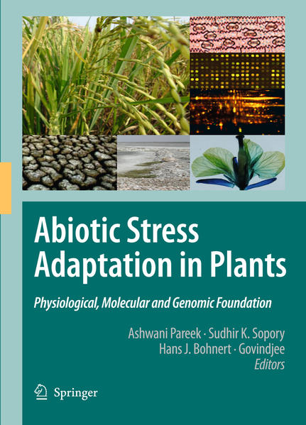 Abiotic Stress Adaptation in Plants - Coverbild