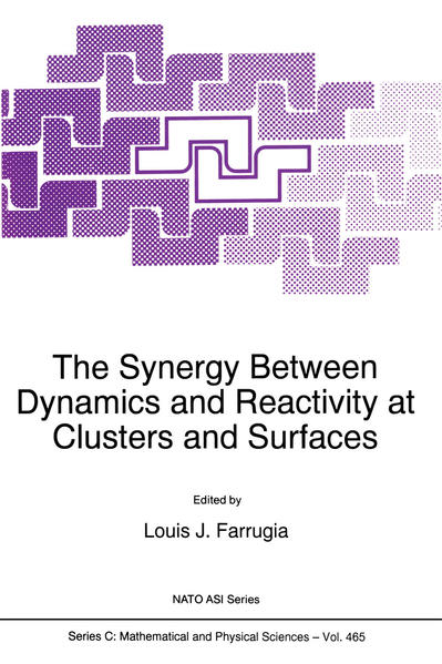 The Synergy Between Dynamics and Reactivity at Clusters and Surfaces - Coverbild