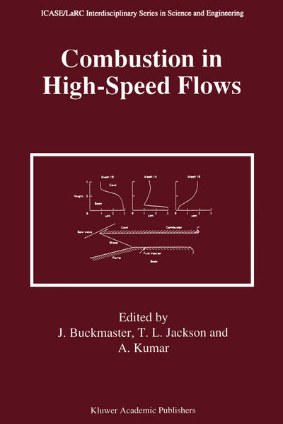 Combustion in High-Speed Flows - Coverbild