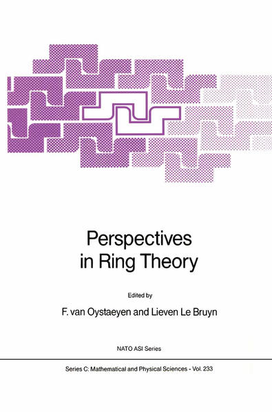 Perspectives in Ring Theory - Coverbild