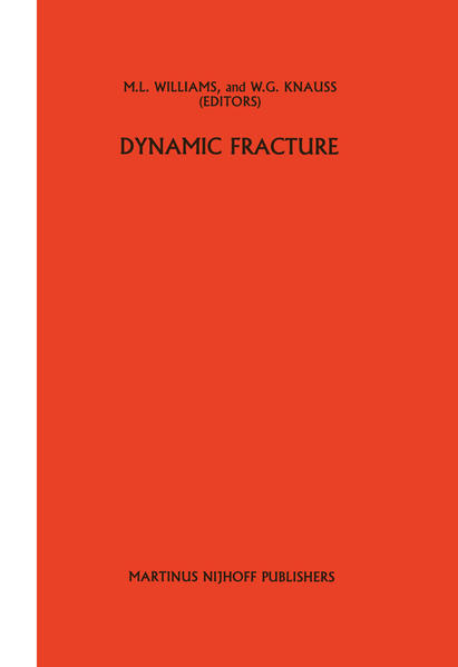 Dynamic fracture - Coverbild