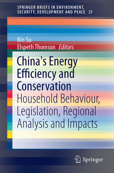 China's Energy Efficiency and Conservation - Coverbild