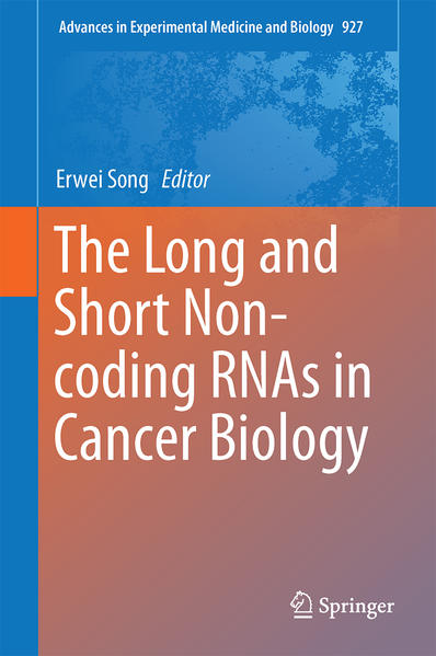 The Long and Short Non-coding RNAs in Cancer Biology - Coverbild