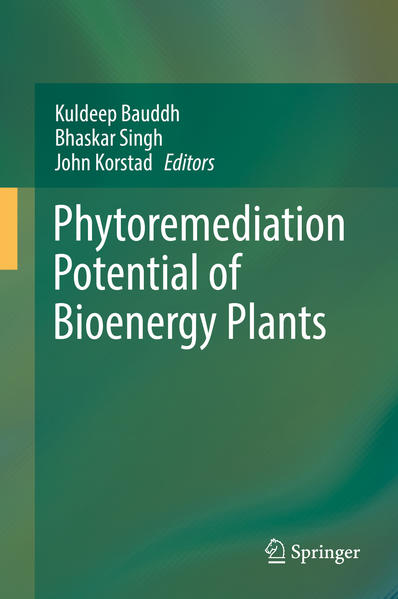 Phytoremediation Potential of Bioenergy Plants - Coverbild